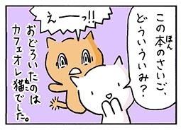 mystery4.jpg