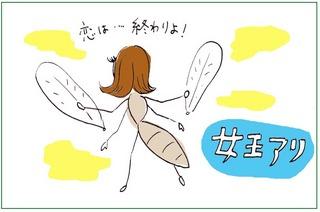 ant2.jpg