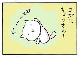 let's4.jpg