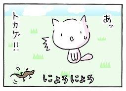 tokage1.jpg