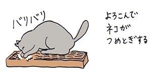 tsumetogi3.jpg