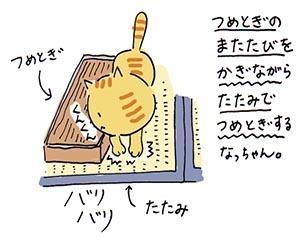 tsumetogi4.jpg