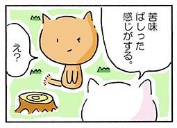 wink4.jpg